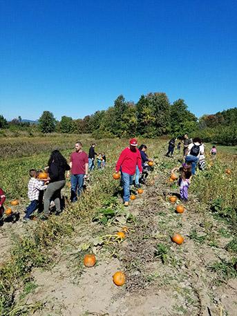 Families walking through the farm field